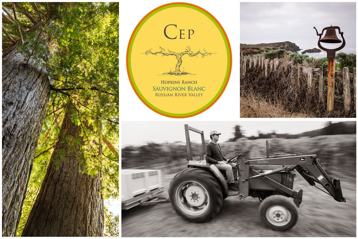 A collage of photographs and graphics that represent this Cuvée. This image is also used as the product image for wines of this Cuvée.